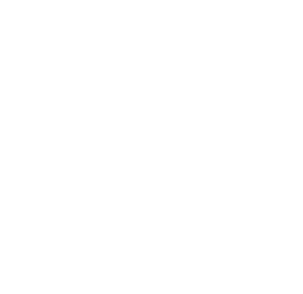 Logo Saint Augustin blanc transparent
